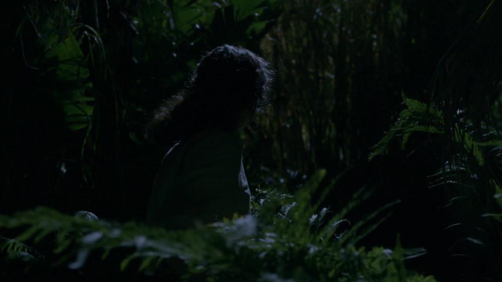 Ep. 13: Ojo de la tormenta Outlander-s03e13-eye-of-the-storm-720p-mkv_001185642